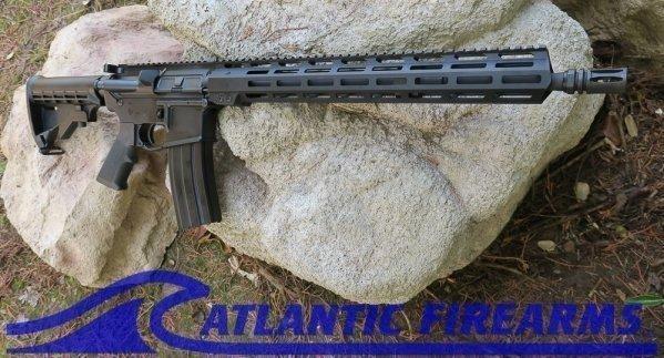 Delton Sierra 316L AR15 Rifle